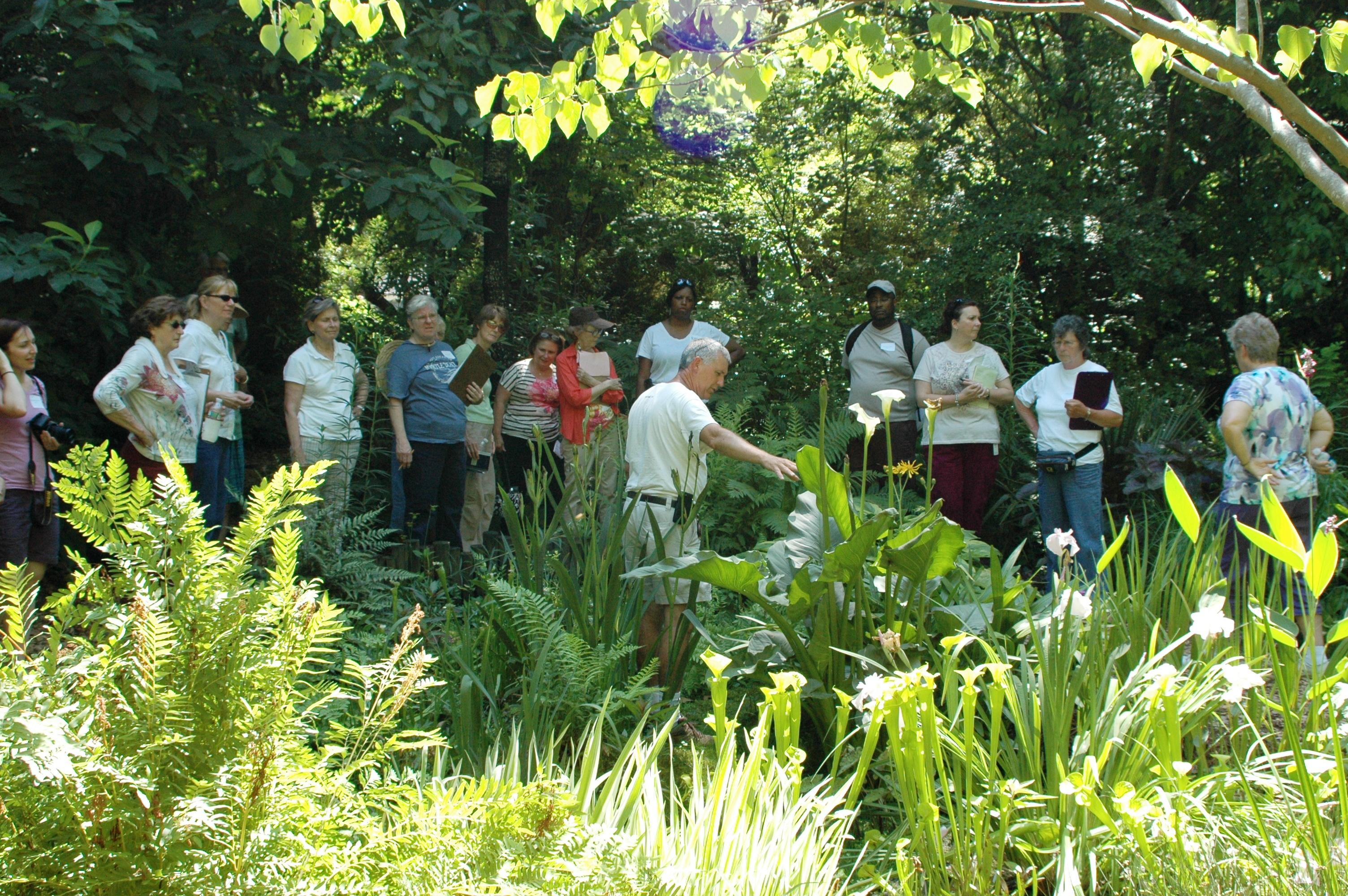 Garden Walk Garden Talk: Garden Walk June 13, 2013
